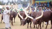 Rwf2.8 billion project set to boost Nyanza cultural tourism ambitions